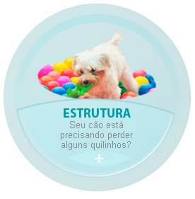 Estrutura Planet Dog Resort