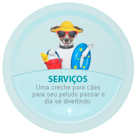 Servi�os Planet Dog Resort